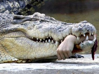 Krokodil%20–%20The%20most%20dangerous%20new%20drug%201
